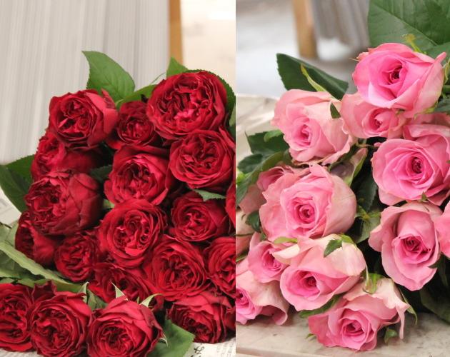 ピンクとレッドのプロポーズ用のバラのお花たち