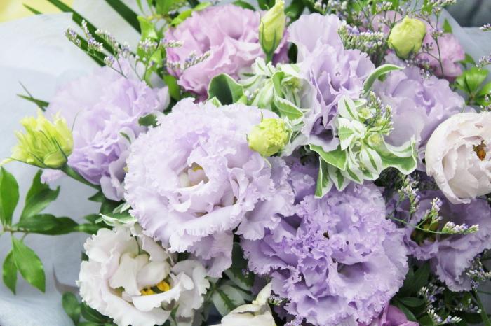 八重の紫のトルコギキョウ