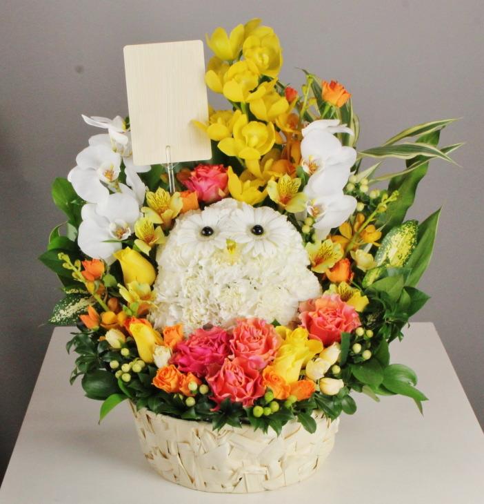 北区は梅田に配達のふくろうアレンジメント。ご開店にふくろうのお花。