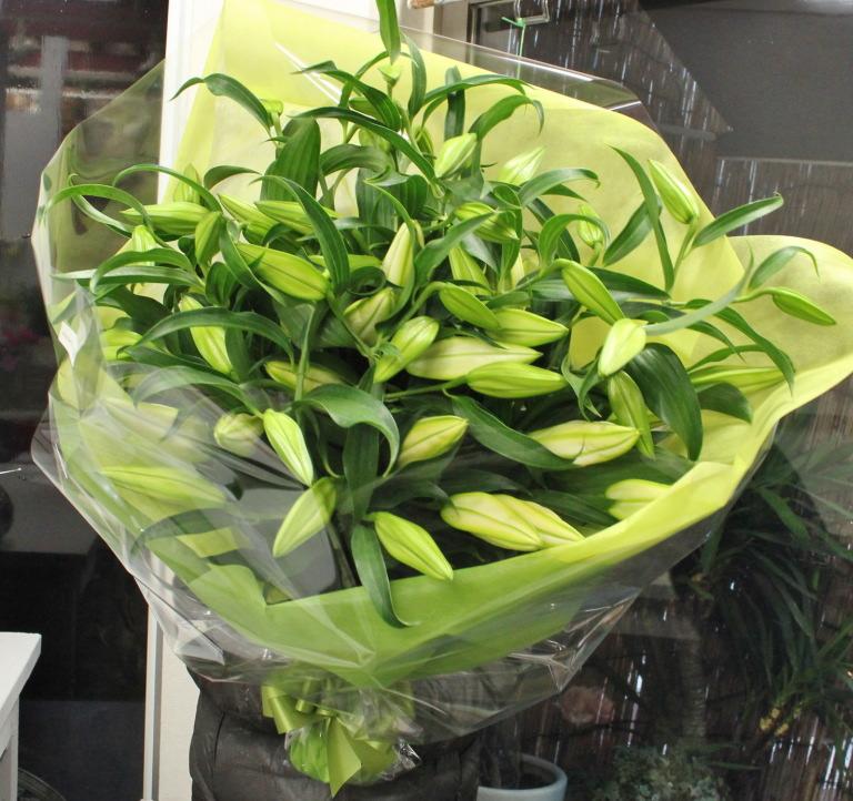 豪華なカサブランカの花束