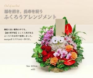 ご結婚祝いや、開店祝いに人気のふくろうアレンジメント。江坂、心斎橋から配達致します。